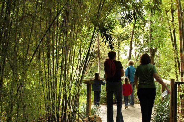 Adelaide Zoo Salt Wash Finish Walkways